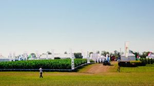 Фотозвіт з International Field Days 2018