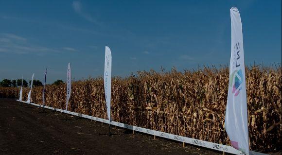 АгроПолігон LNZ-Hub: Кукурудза за крок до жнив фото 7 LNZ Group