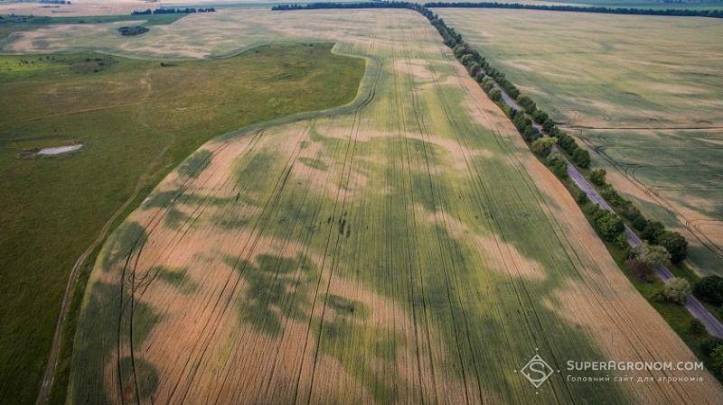 На Черкащині провели агрохімічну паспортизацію 95% сільгоспземель