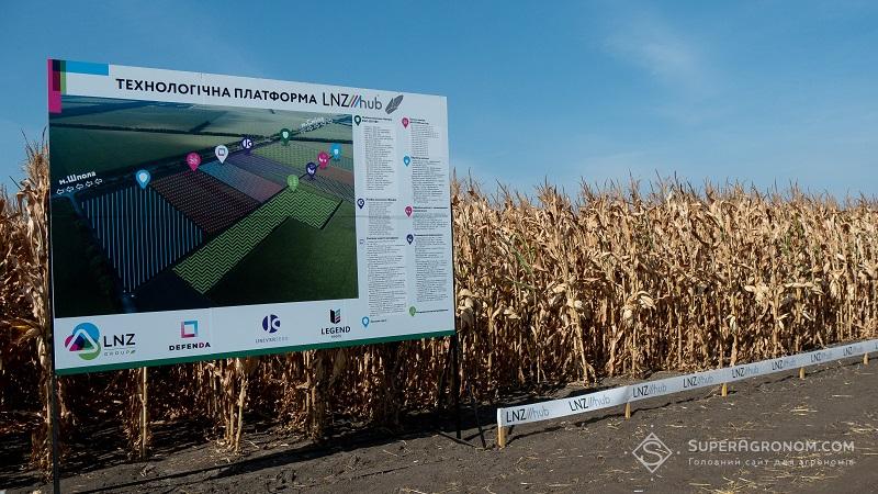 Кукурудза на демо-ділянках