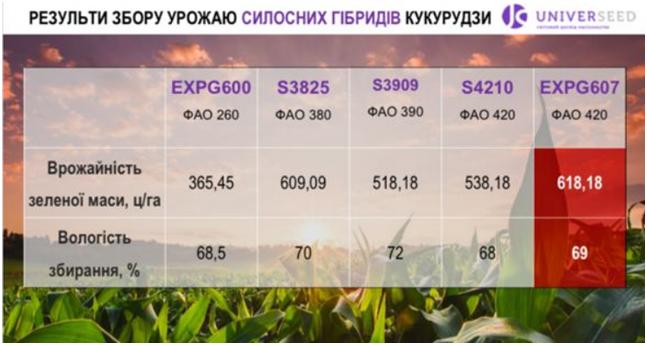 Гібрид силосної кукурудзи UNIVERSEED показав урожайність зеленої маси 62 т/га фото 1 LNZ Group