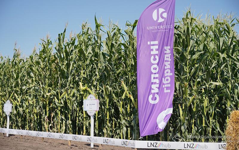 Кукурудза, соняшник, пшениця: усі практичні аспекти вирощування — в одному хабі фото 3 LNZ Group